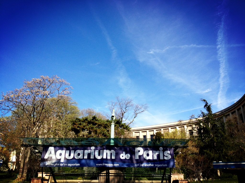 L'Aquarium de Paris pour One Piece